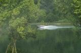 Vue calme sur le Rhône
